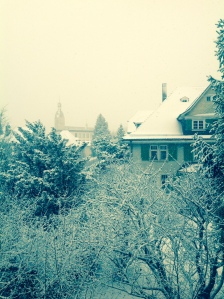 Winterbild; Tamar Venditti