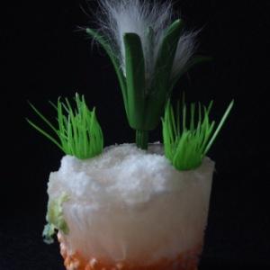 la pianta di guatemala; prettyvenditti.jetzt